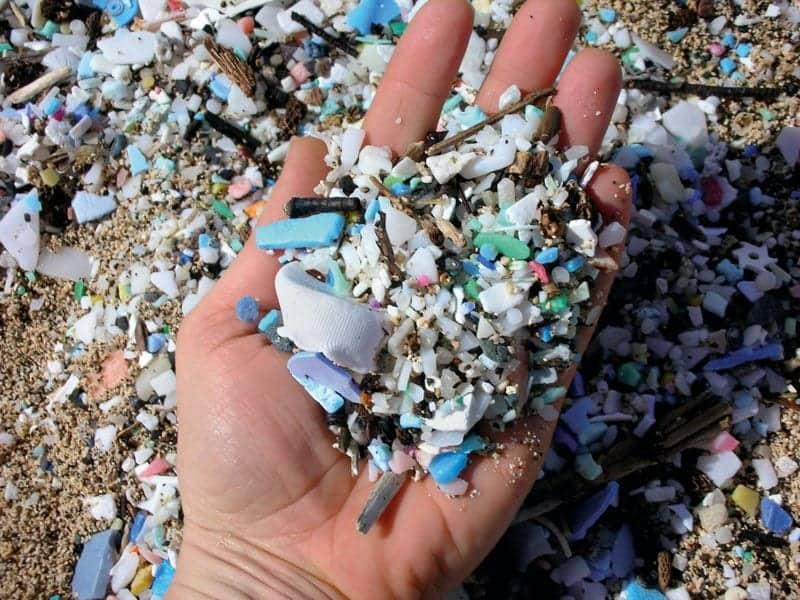 Microplastics Everywhere